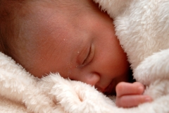 york-professional-baby-photographer-gallery-20