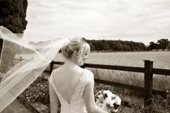 bride-veil-photo