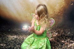 fantasy-photography-woodland