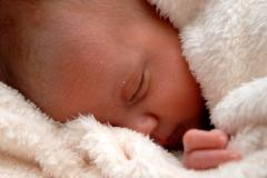 york-professional-baby-photographer-gallery-20